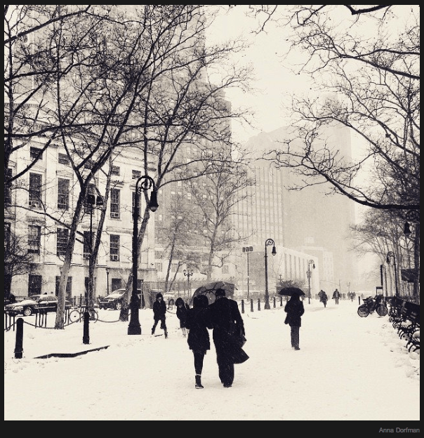 Snow day in New York City, captured by Anna Dorfman on Instagram