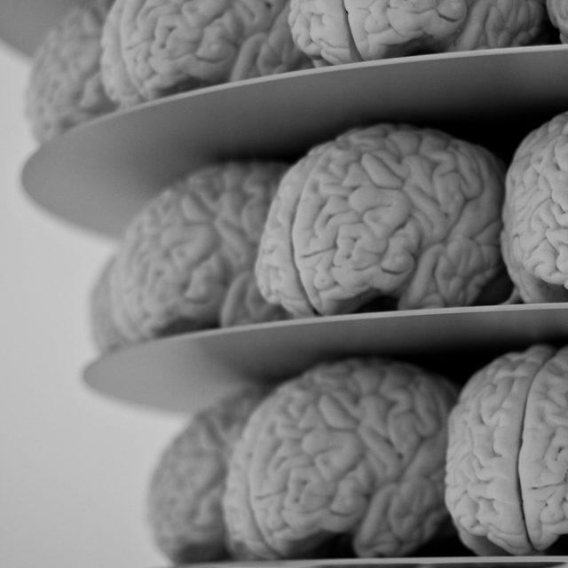 Case study: Brain surgery