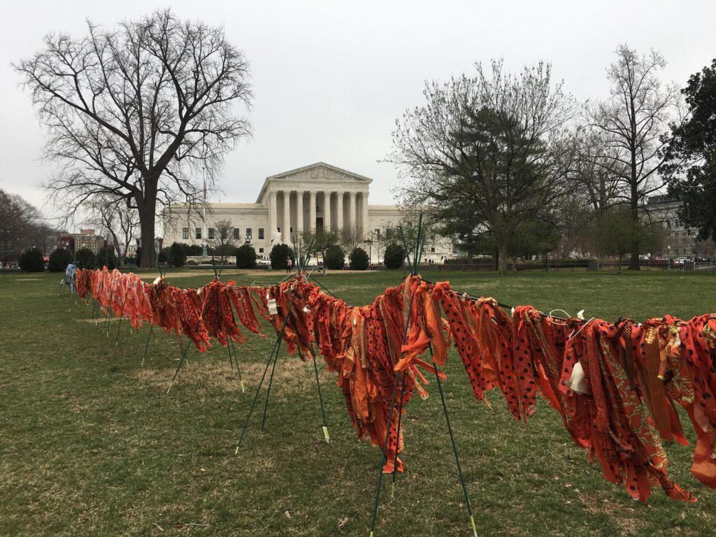 Jacqueline von Edelberg gun violence installation with Supreme Court