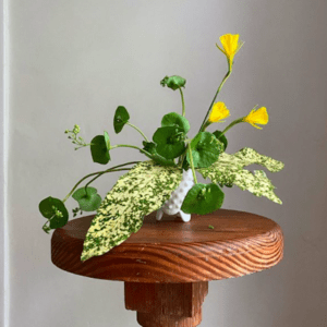 Flowers beautifully arranged in a bowl
