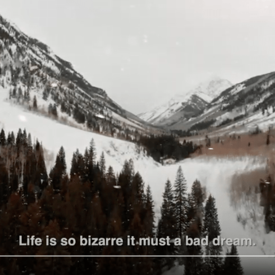 Snow covered mountains with text reading: Life is so bizarre it must be a bad dream